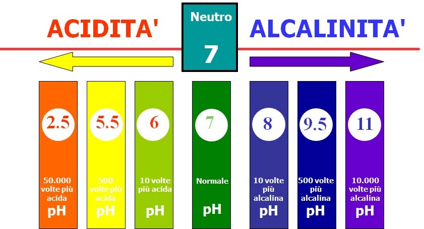 E' importante il pH? – Nappytalia
